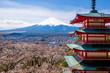The mount Fuji, Japan - 73768840