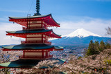 Fototapeta The mount Fuji, Japan