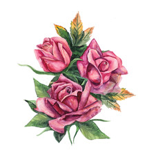 Three pink roses. Pattern from rose.