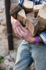 a man brings pieces of wood