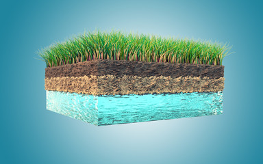 Earth and grass