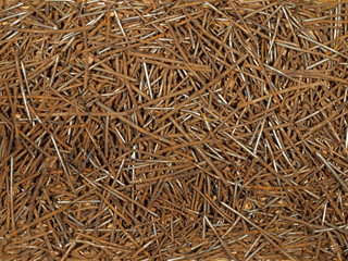 Old rusty nails of different sizes.