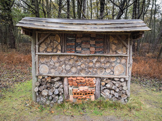 insect hotel in autumn woodland