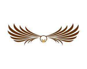 Eagle Fly