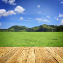 Landschaft mit Berge / Holz