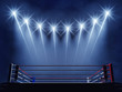 Boxing ring and floodlights , Boxing event arena - 73783814