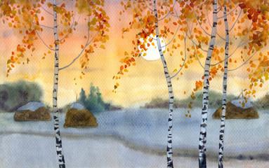 Birches in snowy field