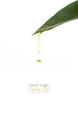 Beauty Treatment. Olive oil dripping from a fresh green leaf