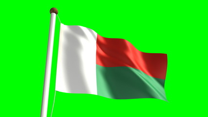 Madagascar flag (seamless & green screen)