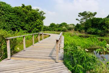 Footbridge in forest