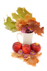 Autumn Still Life, apples, leaves, chrysanthemums on a white bac