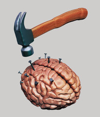 Hammer drives nails into human brain