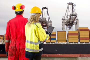 Container ship inspection