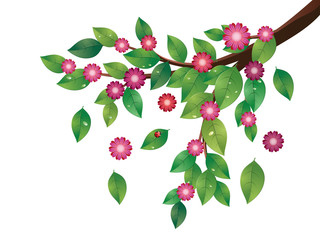 Pink Flowers and Green Leaves Branch