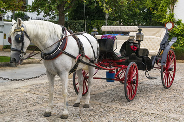 carriage is waiting for you