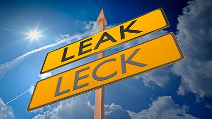 Leak vs Leck - data security