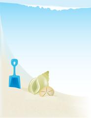 Beach Illustration with seashells