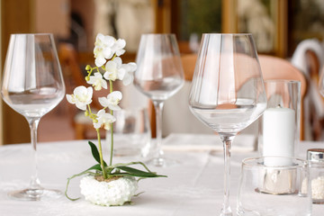 elegant dressed table with glasses and little orchid plant