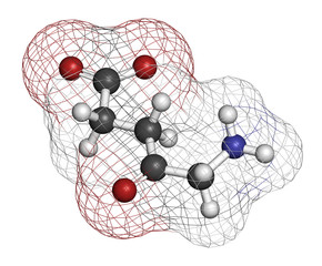 d-aminolevulinic acid (ALA) drug molecule.