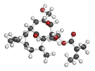 Ingenol mebutate (ingenol-3-angelate) actinic keratosis drug