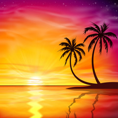 Sunset, Sunrise with Palm Trees