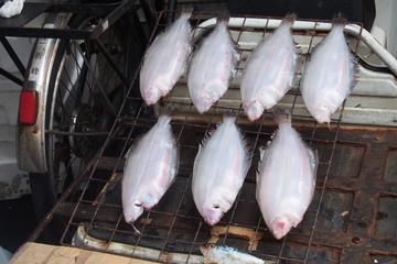 On process Dried flatfish