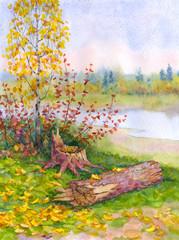 Young autumn birch near a fallen tree