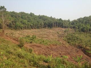 Swidden Site in Northern Laos