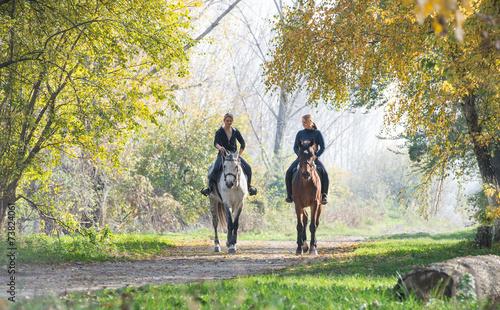 Horse ride - 73824061