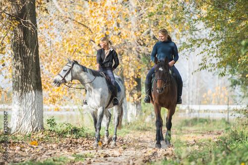 Papiers peints Equestre Horse ride