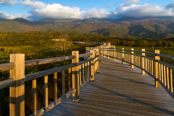 Boardwalk in Shiretoko national park in Hokkaido, Japan