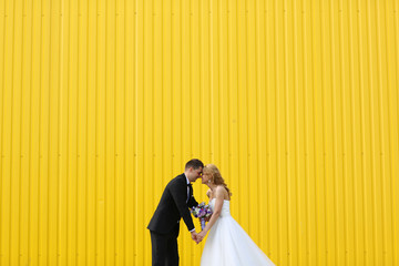 Bride and groom on a yellow background