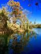 canvas print picture - Herbst spiegelt sich im Weiher wieder