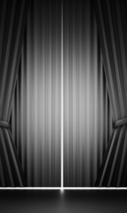 Black and white curtain concept