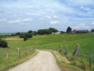 Road through a rural landscape in Limburg (Netherlands)
