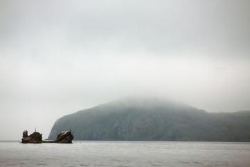 island with sea bears, Japanese sea, Vladivostok