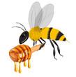 Obrazy na płótnie, fototapety, zdjęcia, fotoobrazy drukowane : bee carrying honey dripping isolated