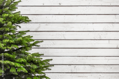 canvas print picture Wood texture firtree