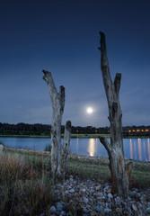 Moonlight lakeside