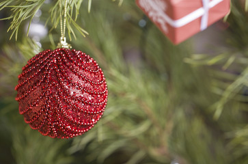 christmas red ball on tree