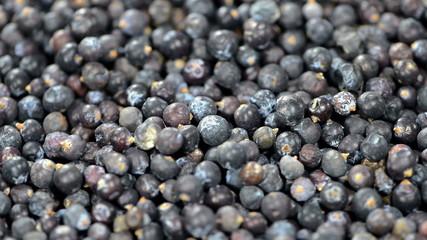 Juniper Berries Background (loopable)