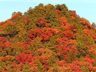山模様‐秋色