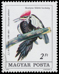 Stamp printed in Hungary shows Pileated Woodpecker