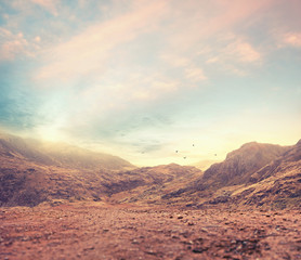soft light landscape