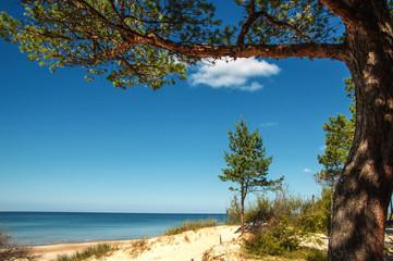 Sunny beach of the Baltic sea
