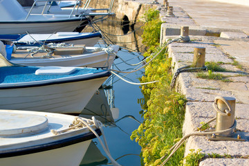 Boats tied at the marina