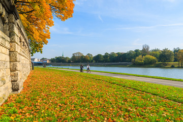 Autumn trees along Vistula river in Krakow on sunny day, Poland