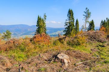 Landscape of Pieniny Mountains in autumn season, Poland