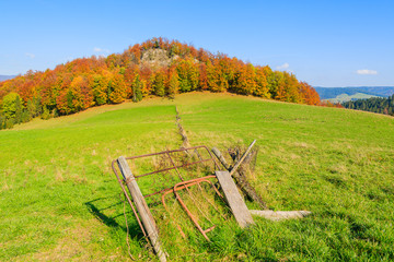 Gate in wooden fence on green field in Pieniny Mountains, Poland