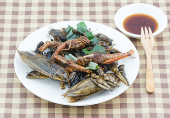 Mix fried insect on white dish